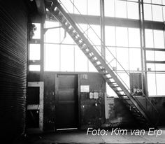 #polloods in Spoorzone Tilburg Polygonale loods zoekt nieuwe bestemming. Foto: Kim van Erp