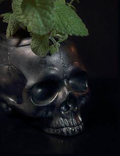 Elegant and efficient Self Watering ceramic Skull planter. *Unique Skull planter for modern home or garden decoration. Skull Planter, Porous Materials, Self Watering, Ceramic Planters, Window Sill, Ceramic Pottery, Ceramics, Modern Decor, Anatomy