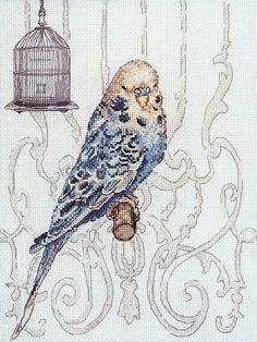 Скачать Bird in Cage бесплатно. А также другие схемы вышивок в разделах: Parrots, Anker, Birds