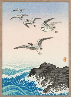 Five seagulls above the sea – Paper Ministry
