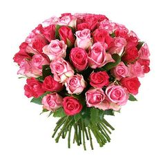 moldova Flowers - Small pink roses