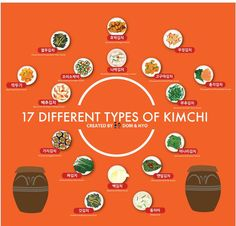 17 Different Types of Kimchi Infographic