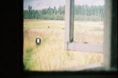©Katrina Kepule  http://unfototipo.com/2014/10/07/dove-le-parole-finiscono-sit-silently-di-katrina-kepule/