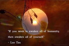 If you want to awaken all of humanity then awaken all of yourself.
