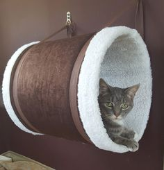 Cat Perch / Cat Bed / Cat House / Cat Furniture / Wall-Mounted Match your decor and create your own custom tunnel! We offer a wide pallet of colors and patterns – from solids to stripes to tropical to Cat Furniture, Fine Furniture, Custom Furniture, Handmade Furniture, Automotive Furniture, Automotive Decor, Furniture Removal, Furniture Movers, Luxury Furniture