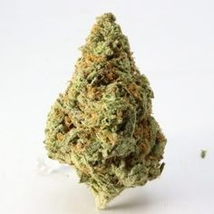 LSD This marijuana strain is popular for delivering a vivid and psychedelic experience with a powerful body buzz and cerebral high. The THC content has been measured up to with a CBD of Medical Marijuana, Cannabis, Marijuana Recipes, Purple Candy, Weed Strains, Weed Shop, Weed Edibles, Incredible Edibles, Buy Weed Online