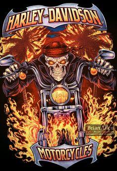 Harley Davidson Motorcycle T-Shirt Designs on Behance Harley Davidson Logo, Harley Davidson Kunst, Harley Davidson Pictures, Harley Davidson Wallpaper, Harley Davidson Motorcycles, Davidson Bike, T Shirt Designs, Biker Photoshoot, Harley Tattoos
