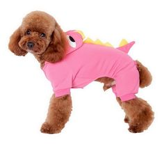 Smile YKK Holiday Dinosaur cat Costumes Soft Warm Dog Cat Clothes Hoodies * Wow! I love this. Check it out now! : Cat sweater
