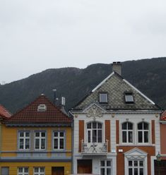 This is the best thing to do in Bergen (and it's not Bryggen or Mount Fløyen)