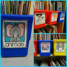 Cutest library labels for your classroom library!