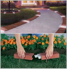 Entertainer Edging- lighted brick edging how cool is that? Kid and dog proof.