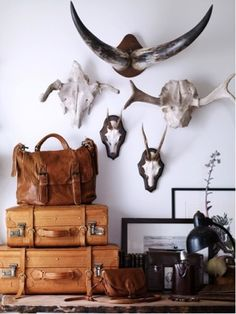 Love this...from interior junkie.com