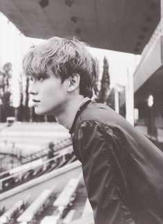 Read 14 from the story Infinity➳kim jongdae by (♪) with 739 reads. Chanyeol, Exo Chen, Kyungsoo, Kaisoo, Kim Jong Dae, Exo Official, Kim Junmyeon, Exo Members, K Idols