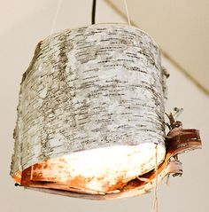 """Birch Bark Lamps One of my brother's neighbors peeled the birch bark off of a dead birch tree he had seen. Jared cut them to the right size we wanted, and using a leather punch he cut holes on each end of the """"lampshade""""."""