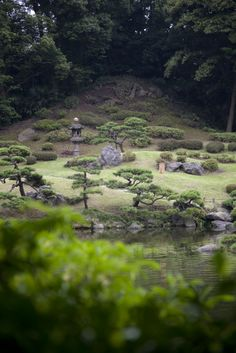 great japanese garden hills and trees