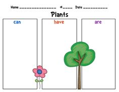 Here's a graphic organizer for introducing or wrapping up a unit on plants.