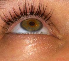 Lash Extensions Airbrush Makeup, Lash Extensions, Lashes, Brides, False Eyelashes, Eyelashes, The Bride, Wedding Bride, Eye Brows