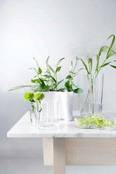 Iittala and Aalto vases
