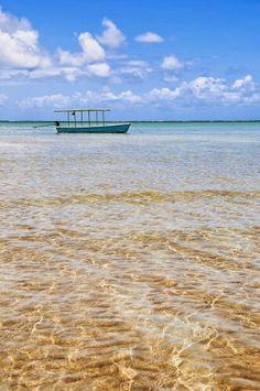Praia de Carneiros (PERNAMBUCO)!!!  :-)