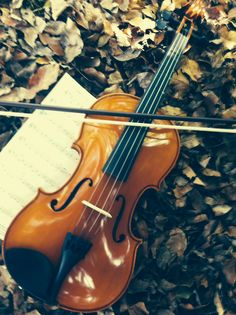14 Best Pictures of my violin images | Violin, Music