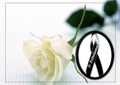 Get Well Soon Messages, Flower Phone Wallpaper, Condolences, Funeral, Place Card Holders, Director, Facebook, Messages, Death