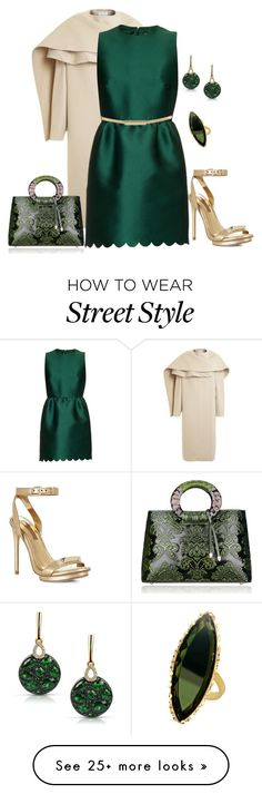 """""""Untitled #4876"""" by borntoread on Polyvore featuring PINGHE, RED Valentino, BCBGMAXAZRIA, Topshop, Marco Moore, Lana, women's clothing, women, female and woman"""
