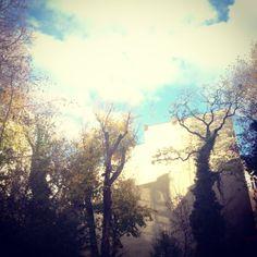 Sky above Berlin  © Wesna Wilson #WesnaWilson