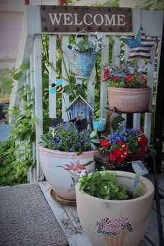 Love getting the pots out of the shed. Garden Photos, Summer 2015, Planter Pots, Backyard, Flowers, Container, Honey, Patio, Backyards