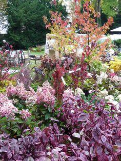 Stand des pépinières J.P. Hennebelle, Journées des Plantes de Courson à Chantilly, Domaine de Chantilly, Chantilly (60)