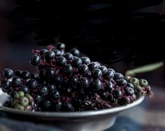 black berries by Beverly at Texture Tuesday