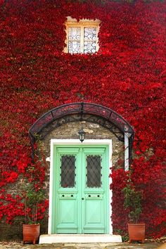 A wall of red leaves surrounds an eye-catching entryway