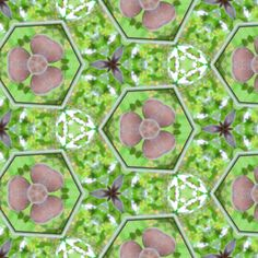 Gris_Grapes_6 fabric by bahrsteads on Spoonflower - custom fabric