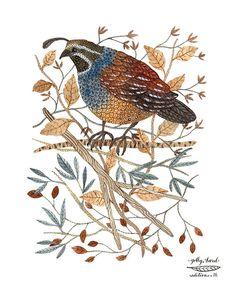 quail bird art print by golly bard by GollyBard on Etsy