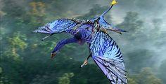 Ikran III by DrowElfMorwen on DeviantArt