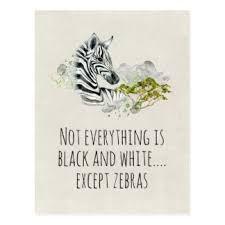 Image result for animal postcards uk