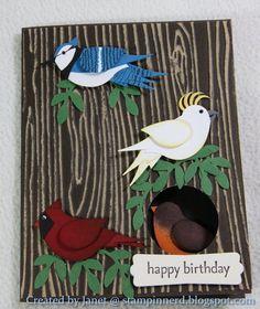 by Janet Yates..... Blue Jay, Cockatoo, Robin, and a Cardina