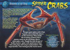 Spider Crabs | Wierd N'wild Creatures Wiki | Fandom powered by Wikia