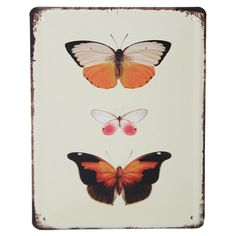 Vintage Metal Wall Plaque - Orange Butterflies Need to give a blank wall some oomph Want to add your own quirky vintage retro stamp to a room Look no Vintage Metal, Retro Vintage, Vintage Style, Orange Butterfly, Metal Plaque, Wall Plaques, Butterflies, Vintage Fashion, Canvas Prints