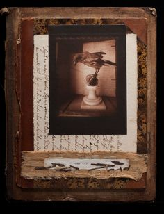 Jesseca Ferguson - pinhole photography, 19th century photo processes and collage