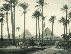 First picture of the Giza Pyramids 1870-1875