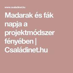 Madarak és fák napja a projektmódszer fényében | Családinet.hu Kindergarten, Teaching, Education, Green Day, Trees, Birds, Google, Projects, Tree Structure