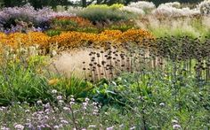 Sussex Prairies Garden | Kids and family days out - Green Day Out UK Holidays and Activities
