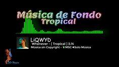 51 Ideas De Música Sin Copyright Musica Solo Musica Fondo Musica