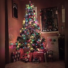 on Insta Web Viewer Days Till Christmas, Xmas, Ber Months, Christmas Decorations, Holiday Decor, Christmas Trees, My Room, View Photos, Super Excited