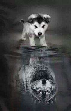 Когда ты маленький не значит что и в душе ты тоже маленький.!☺