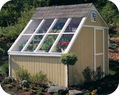 Handy Home Phoenix 8x10 Solar Shed Greenhouse Kit . I like this shape for a coop.