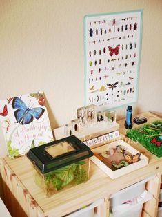 Montessori Kinderzimmer, Auf ihrem Montessori-Regal: Ein Insekten-Themenbereich mit Materialien zum Thema Insekten.