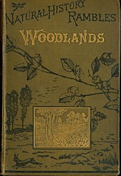 Natural History Rambles - Woodlands by M.C.Cooke 1879