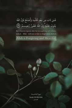 Surah Al-Ma'idah (The Table Spread) Beautiful Quran Quotes, Quran Quotes Inspirational, Islamic Love Quotes, Muslim Quotes, Islam Beliefs, Islam Quran, Alive Quotes, Islamic Quotes Wallpaper, Quran Wallpaper