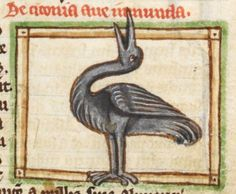 Bird detail from medieval illuminated manuscript, British Library Harley MS 3244, 1236-c 1250, f52r